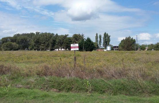 Terreno en zona residencial-Acceso Salliquelo