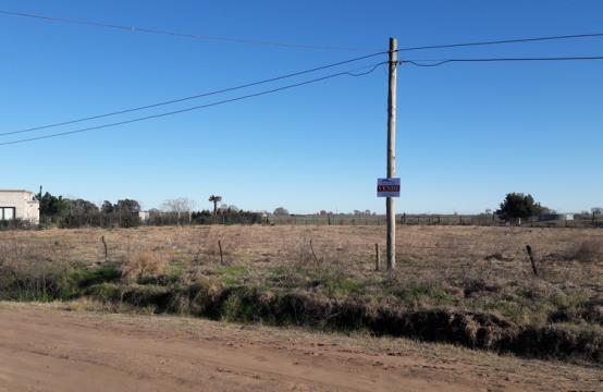 Terreno en zona Residencial Salliquelo