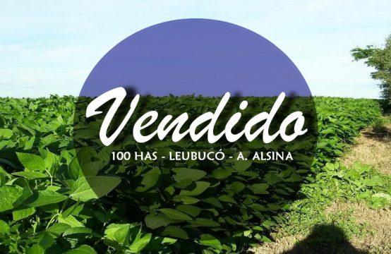 100 hectáreas Leubucó (Adolfo Alsina)