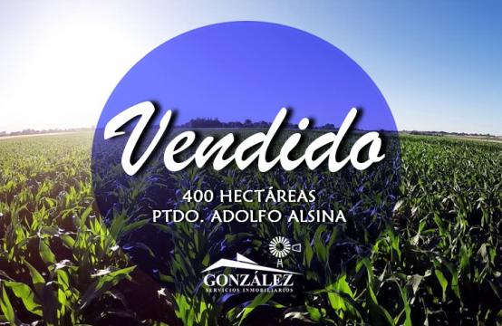 400 hectáreas agrícolas en A. Alsina