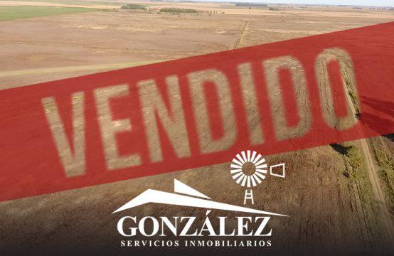 311 hectáreas en Villa Maza